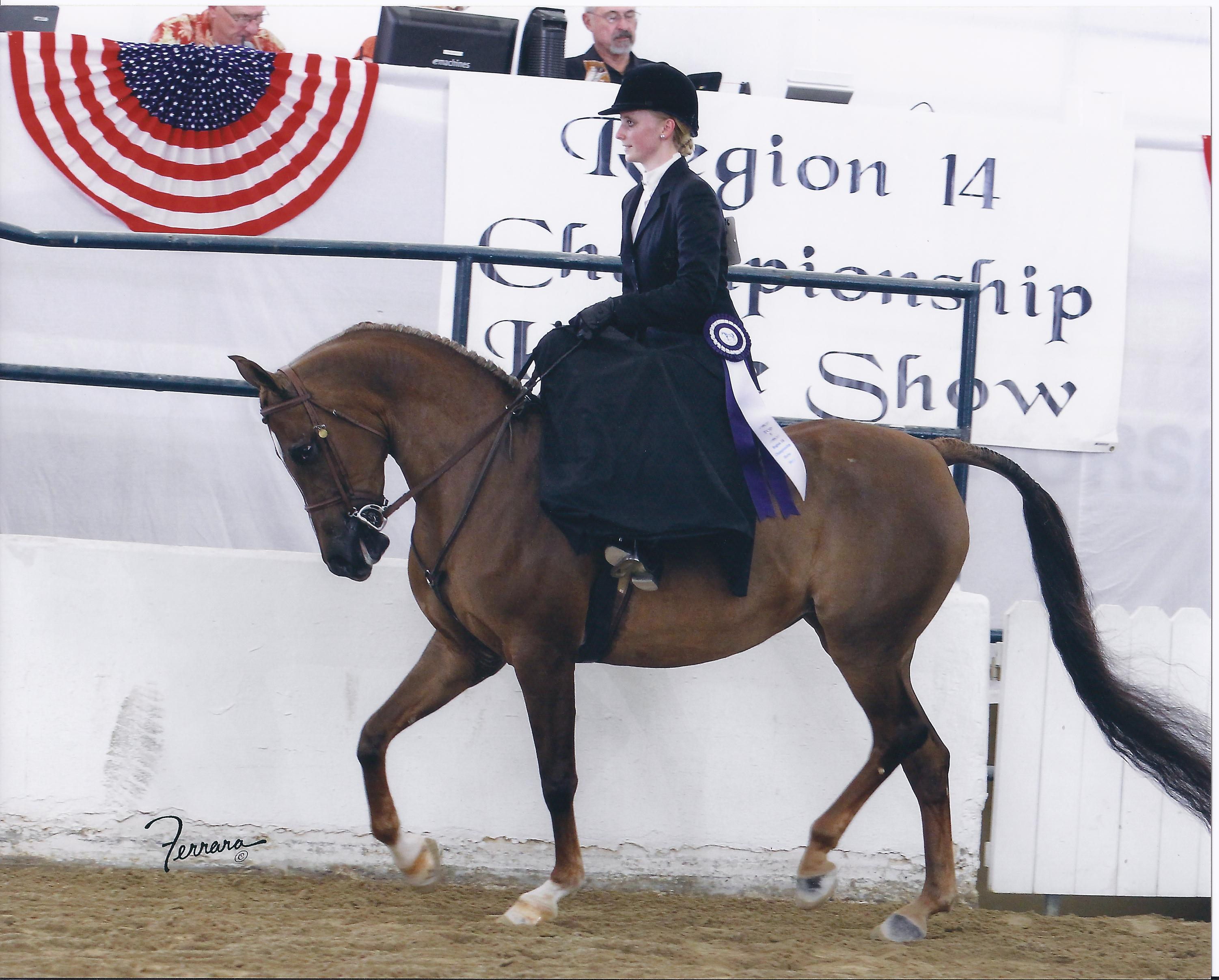 Whittnee Top 5 Sidesaddle