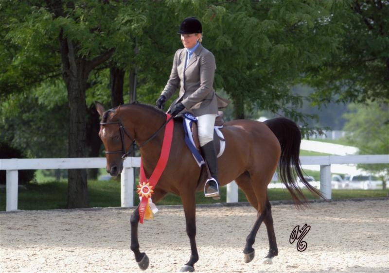 Breezin Region 14 Reserve Champ SHUS Jr Horse