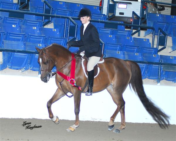 Whittnee~ Reserve Champ Hunter ATR