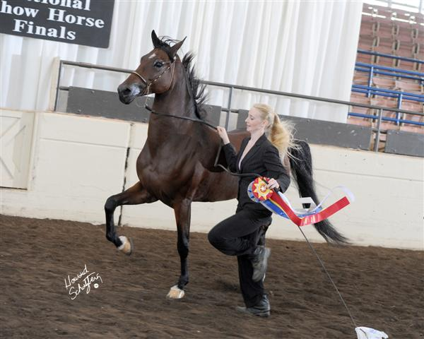 Double Daare~ Reserve National Champion